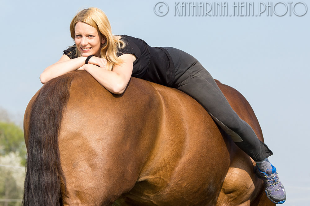 Zwei besondere Pferde