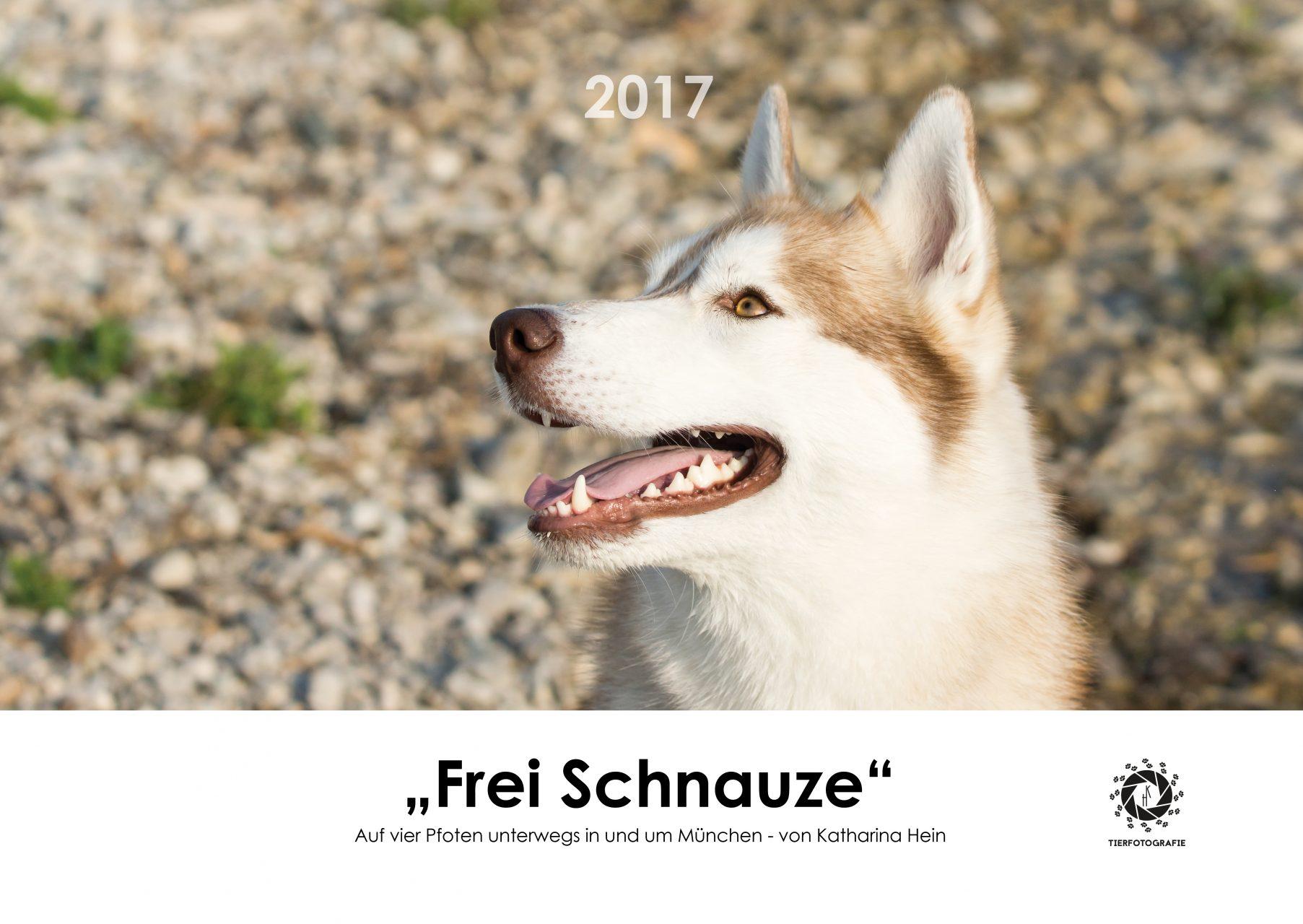 Kalender Frei Schnauze 2017 München Tierfotografie Husky Yuki